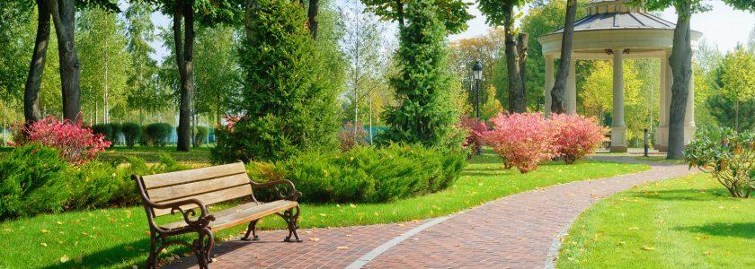 słoneczny dzień w parku z ławką